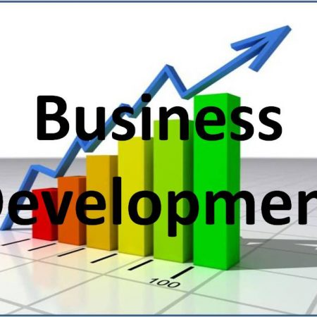 Business Development and Mastery